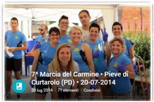 curtarolo2014
