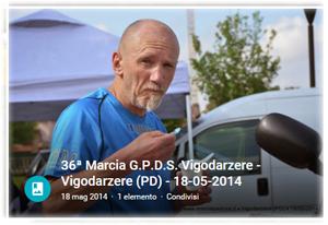 vigod2014