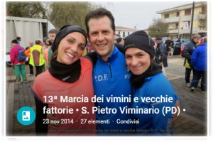 viminario2014